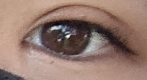 目 と は ハム