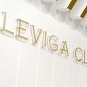 レヴィーガクリニックの店舗画像