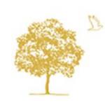 羽根木の森アイクリニックの店舗画像